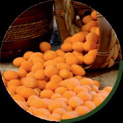 cipspeanuts